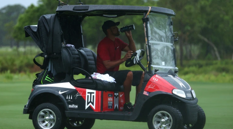 The Tiger-Customized Cart, An E-Z-GO Freedom RXV EliTE, Sold For $16,500.